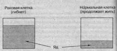 Схема результатов введения специального яда в организм ракового больного